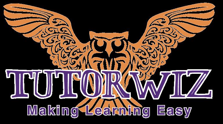 Tutorwiz Senior Owl Logo | Tutorwiz